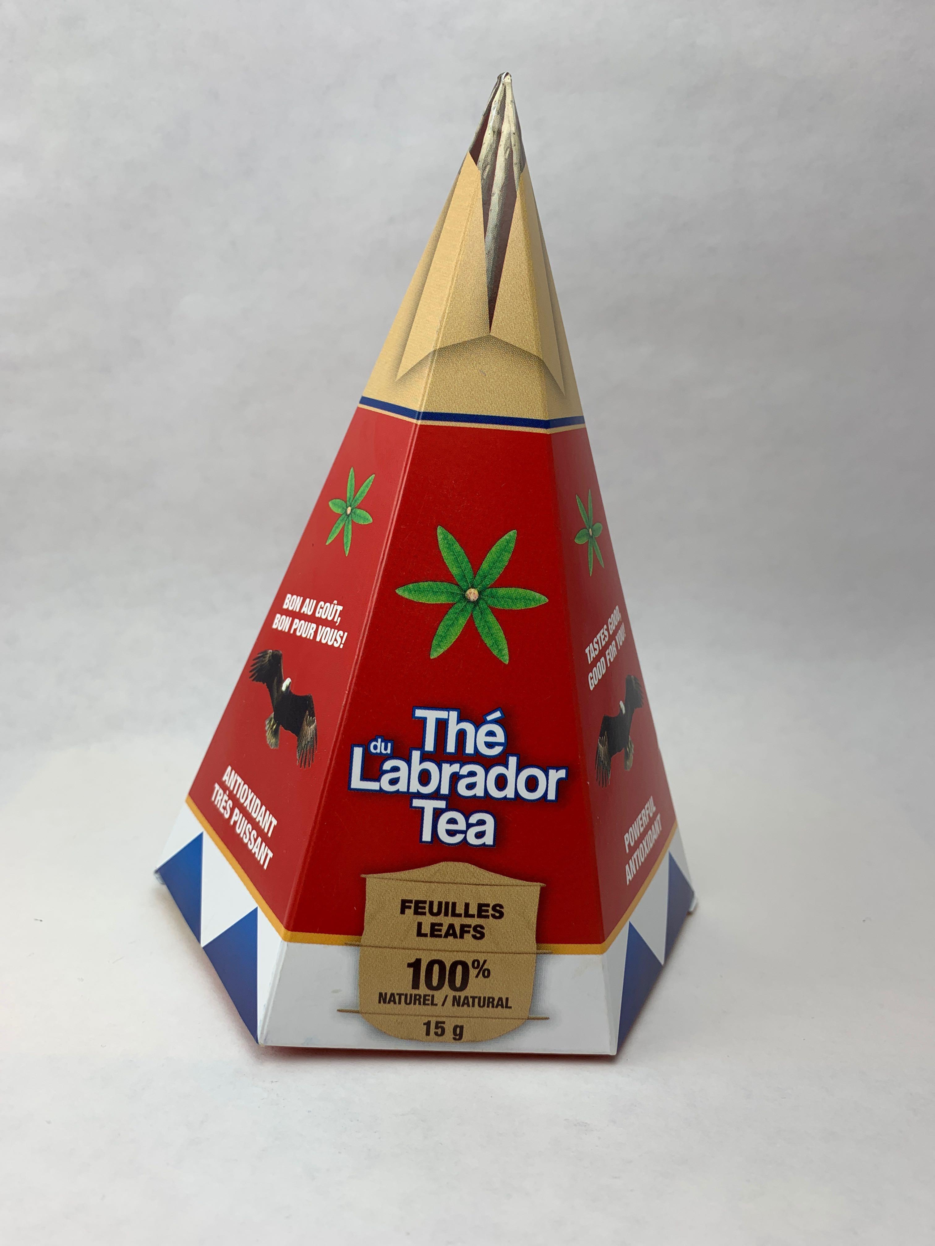 tipi thé du Labrador ledon