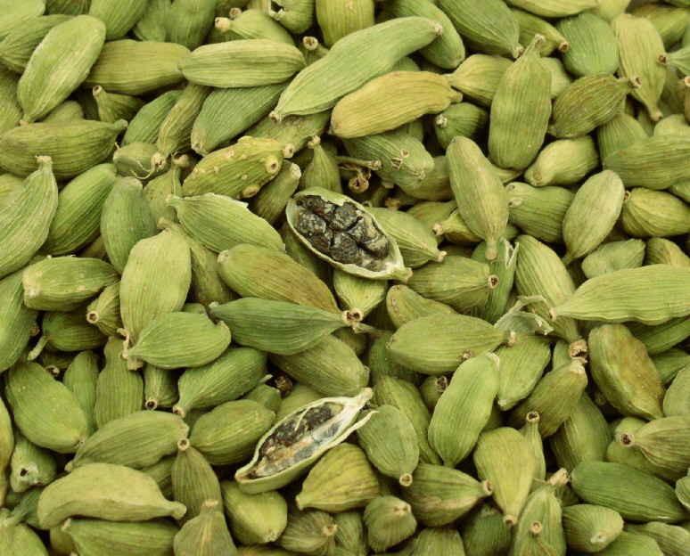 Cardamome Inde, Indian cardamom