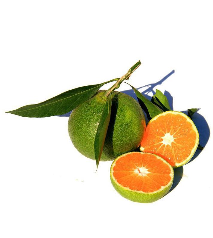 Mandarine verte, green mandarin
