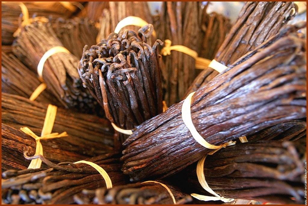 extrait de vanille, vanilla extract